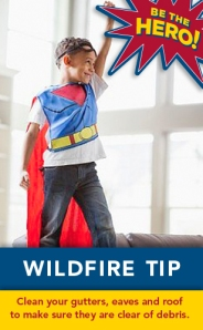 Wildfire Safety Tip